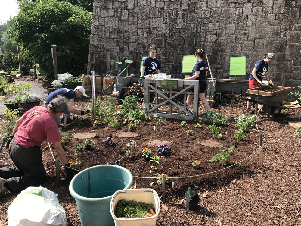 Nathan Ahlgrim (NS), Lindsey Shapiro (NS), Signe White (PBEE), and Samantha Schwartz (BCDB) worked hard to plant new flower bulbs at Fernbank.