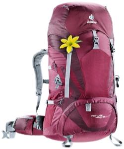 purple deuter 45 .jpg