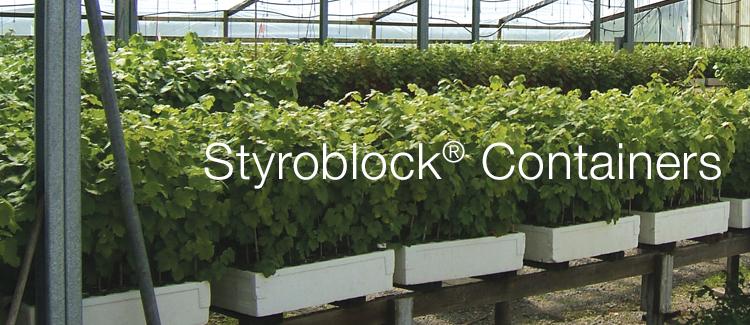 styroblock_2.jpg