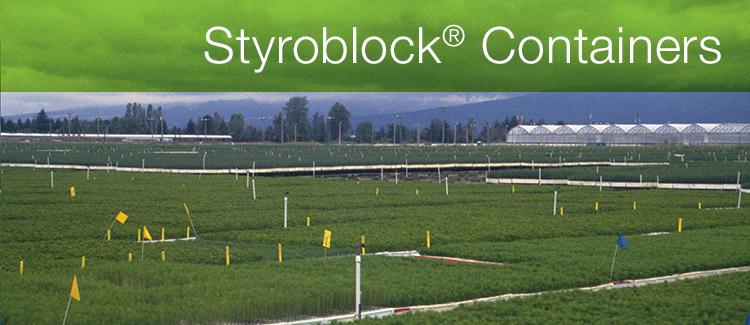 styroblock_3.jpg