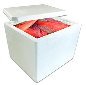 LargeBoxfish.jpg