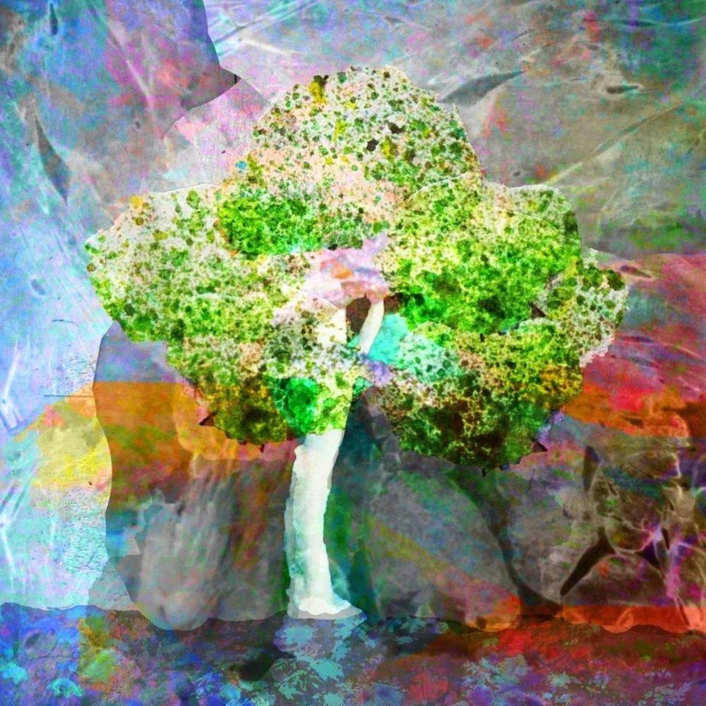 Tree%252Bw_%252Bbrilliant%252Bcolors.jpg