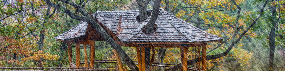 treehouse-rain-naturespace-3d