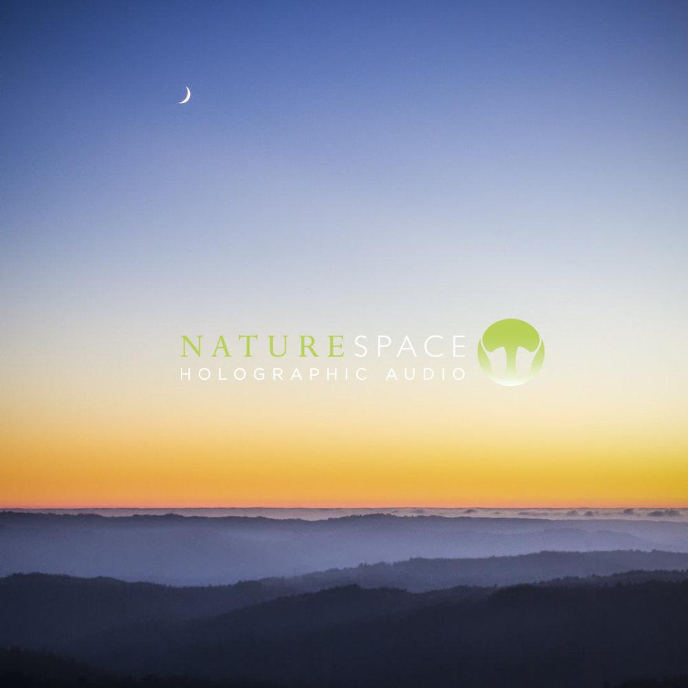 Naturespace Rain Sound Effects Generator Circuit