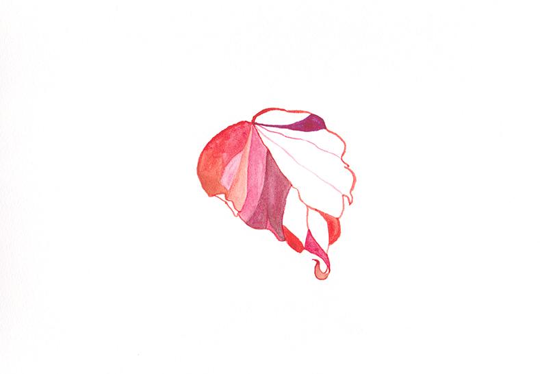 web_pinkleaf.jpg