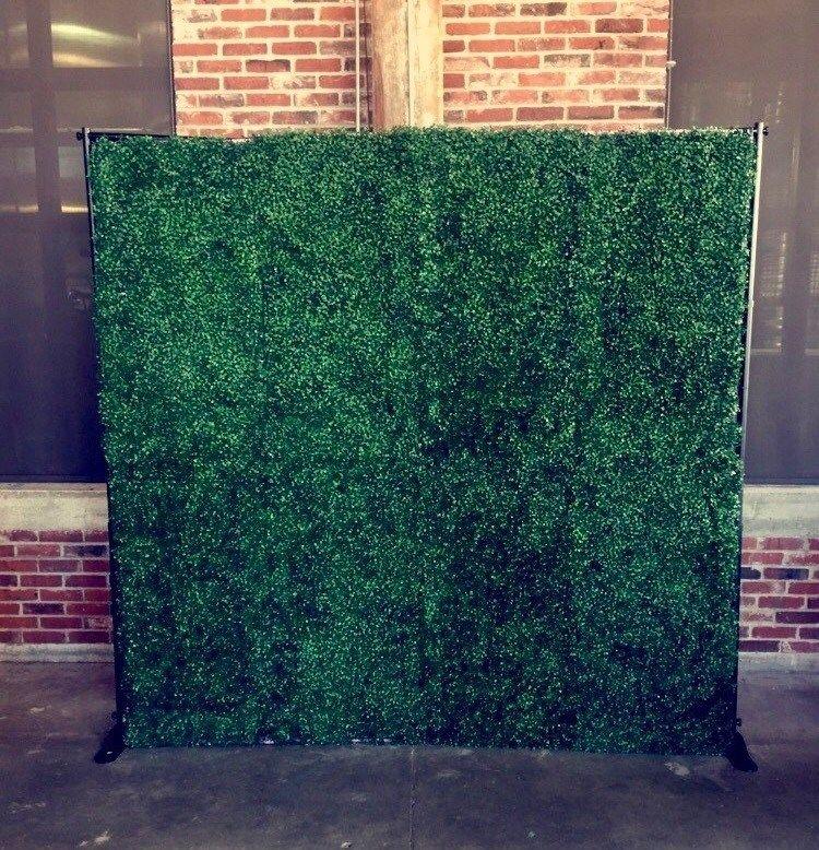 hedgewallbackdrop.jpg