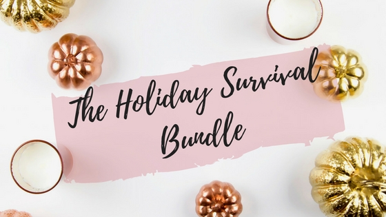 The Holiday Survival Bundle.jpg