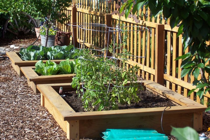 great-garden-ideas-spectacular-on-interior-and-exterior-designs-plot-how-to-plan-a-vegetable-step-1.jpg