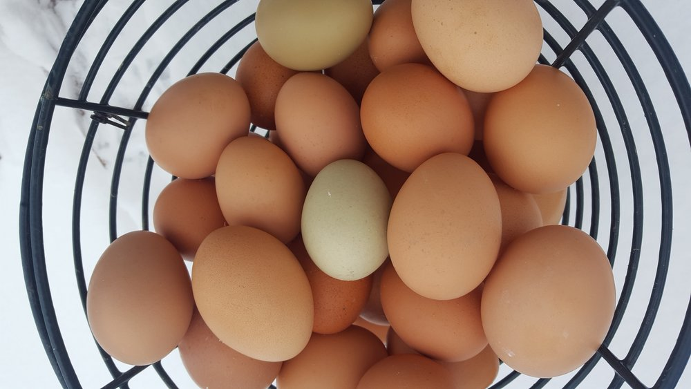 Eggs - Our hens live in the open pasture with protective fencing and a laying shelter.They are fed GMO-free feed and any wilted vegetables from the farm.