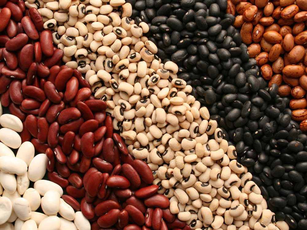 Now included, starting this year! - ORGANIC DRY BEANS