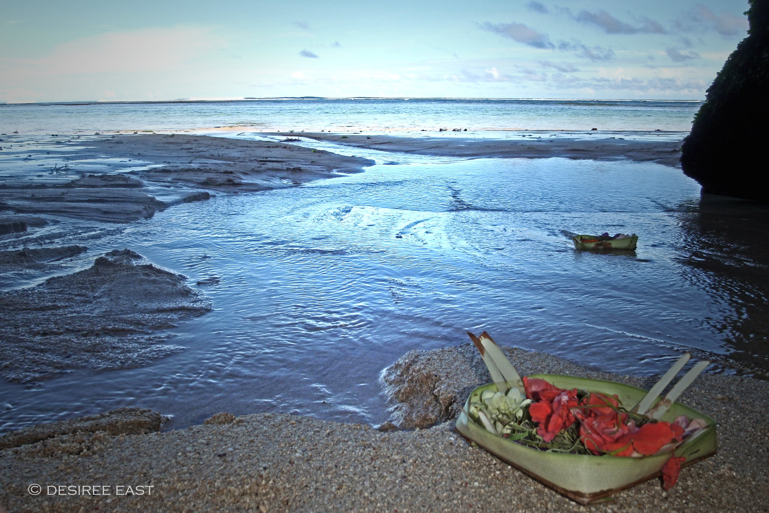 offerings out to sea. bali. photo by desiree east