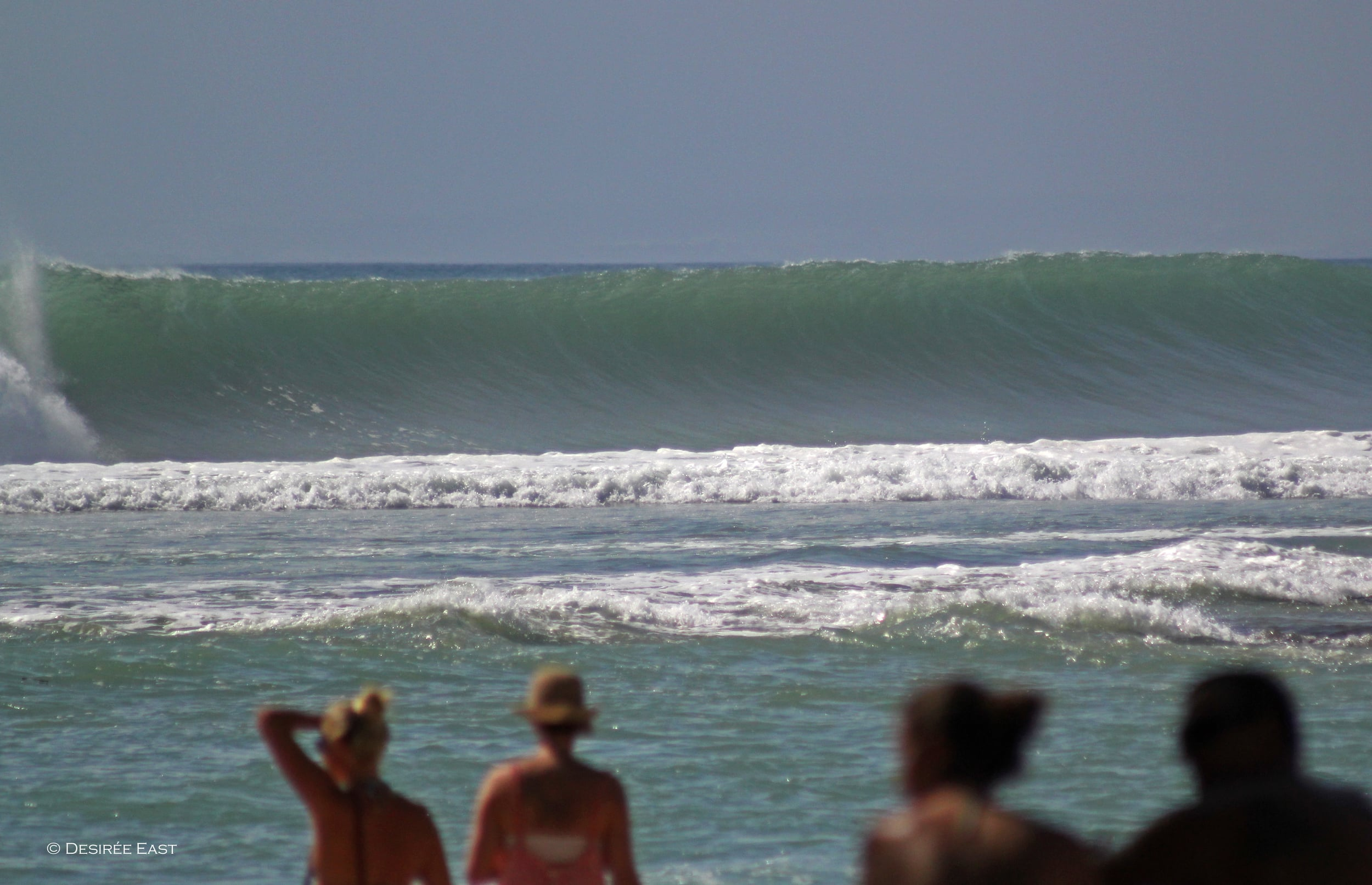 yes, it was that big. bali, indonesia. photo by desiree east