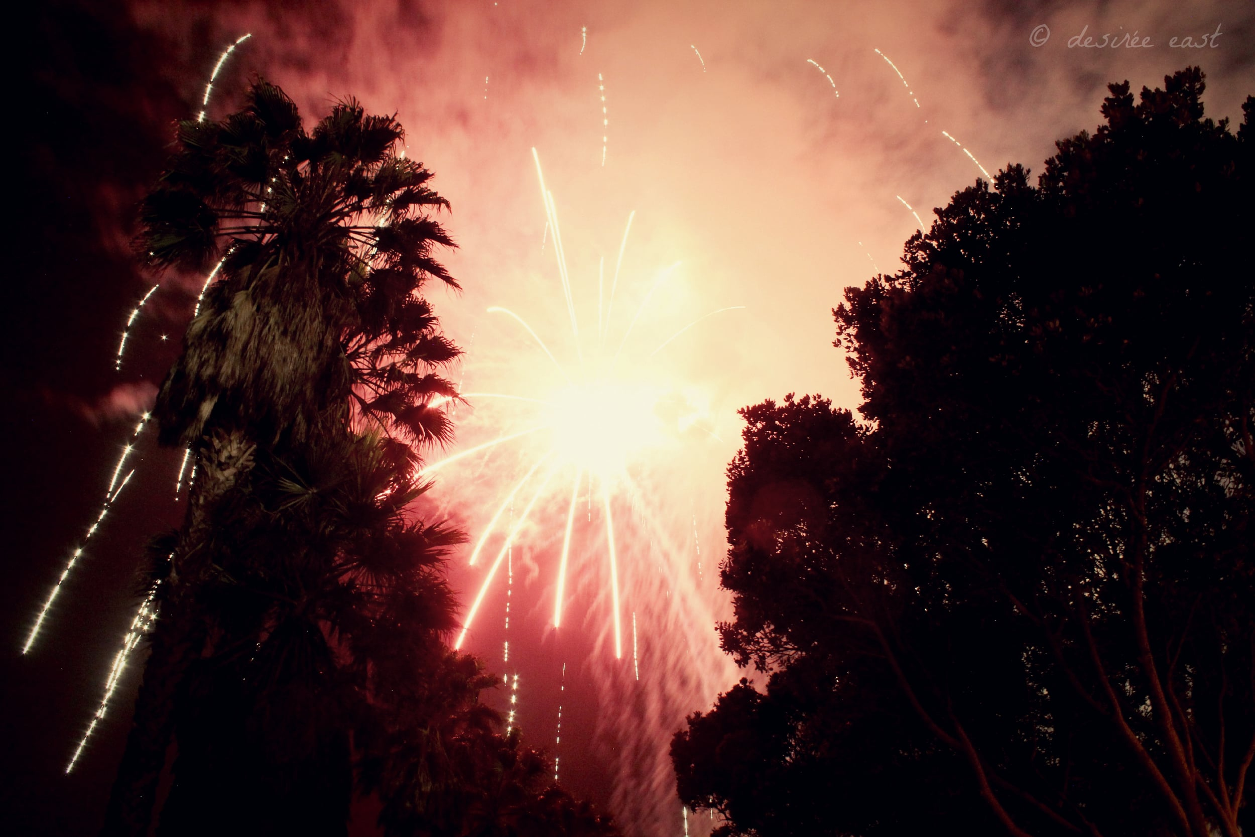 birthday fireworks at the fairgrounds. ventura county fairgrounds. photo by desiree east