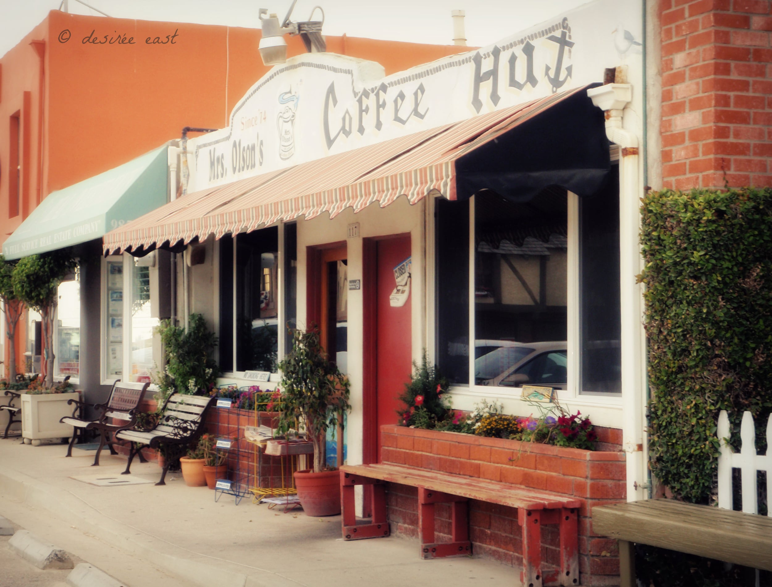 mrs. olson's breakfast spot. hollywood beach, california. photo by desiree east