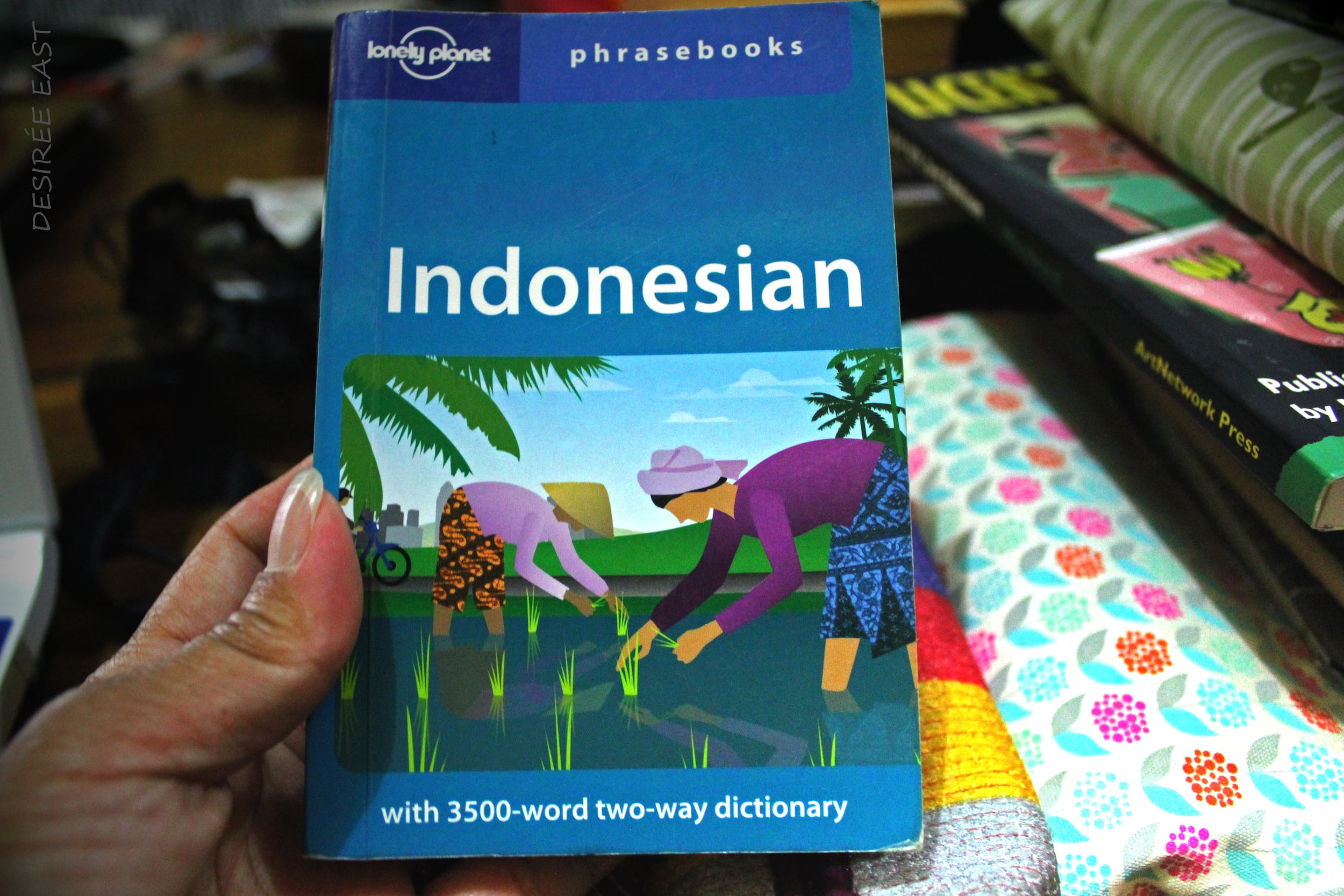indonesian dictionary and phrase book. photo by artist desiree east