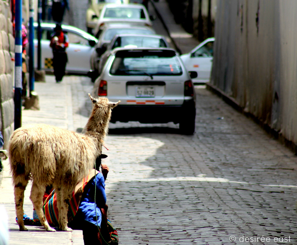 cuzco-peru-photography-by-desiree-east-1.jpg
