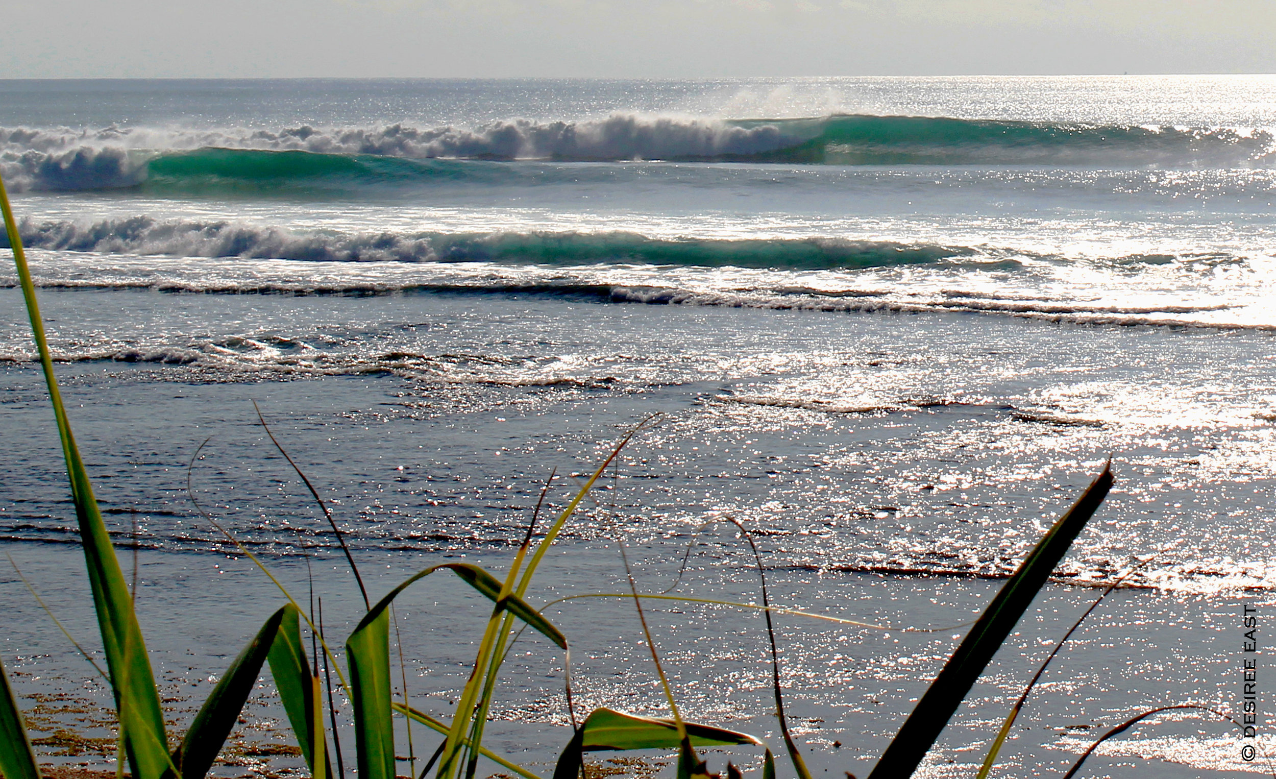 cleaner day for surf. bali, indonesia. photo by desiree east