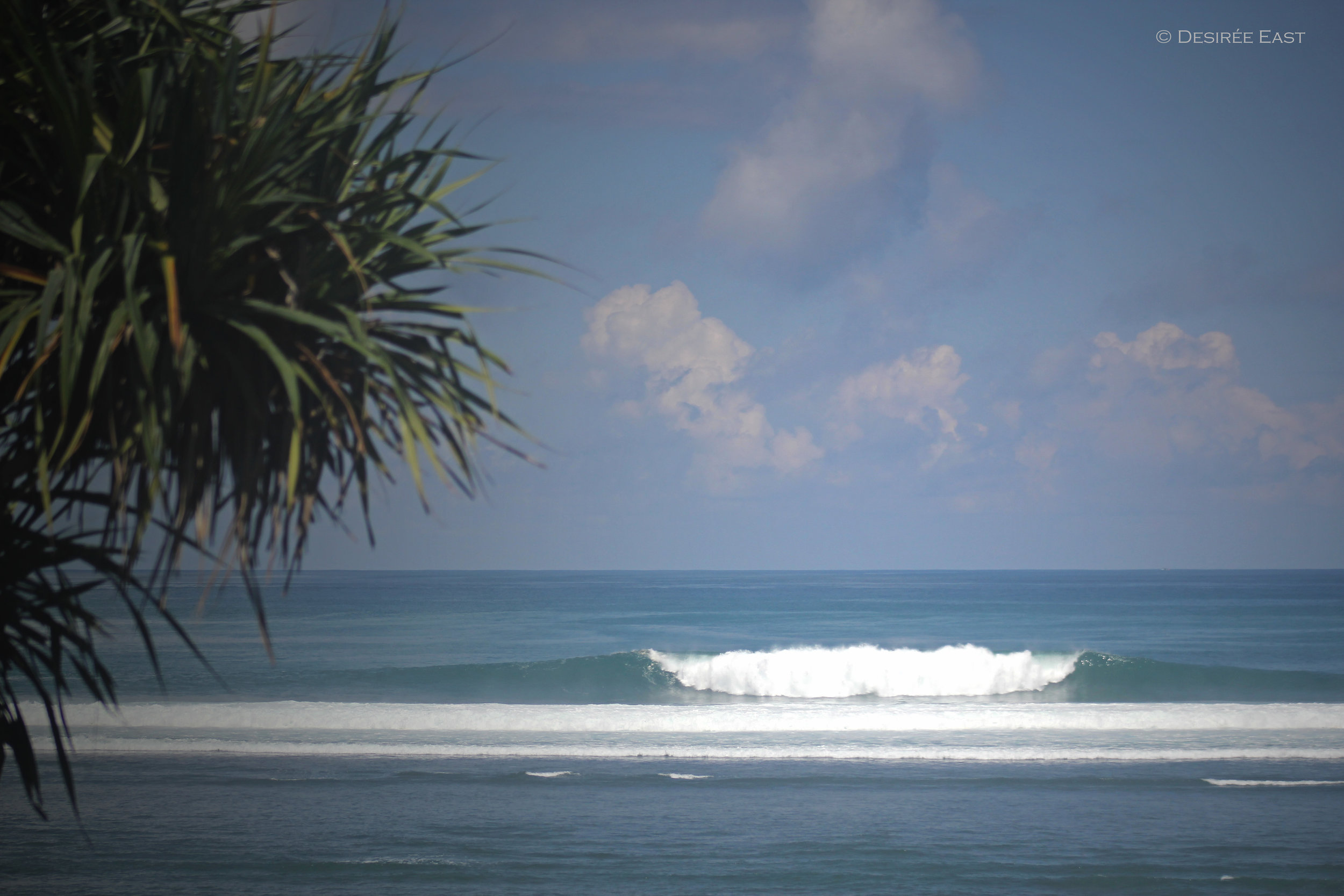 bigger than it looks. bali, indonesia. photo by desiree east