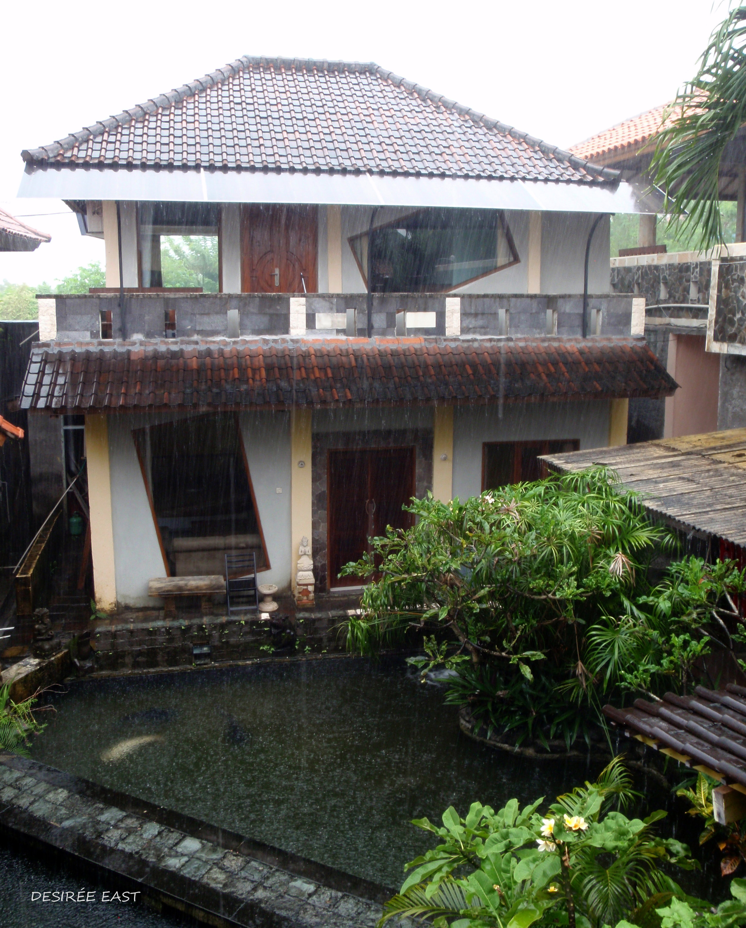 view from upstairs. andree homestay. bali, indonesia. photo by desiree east