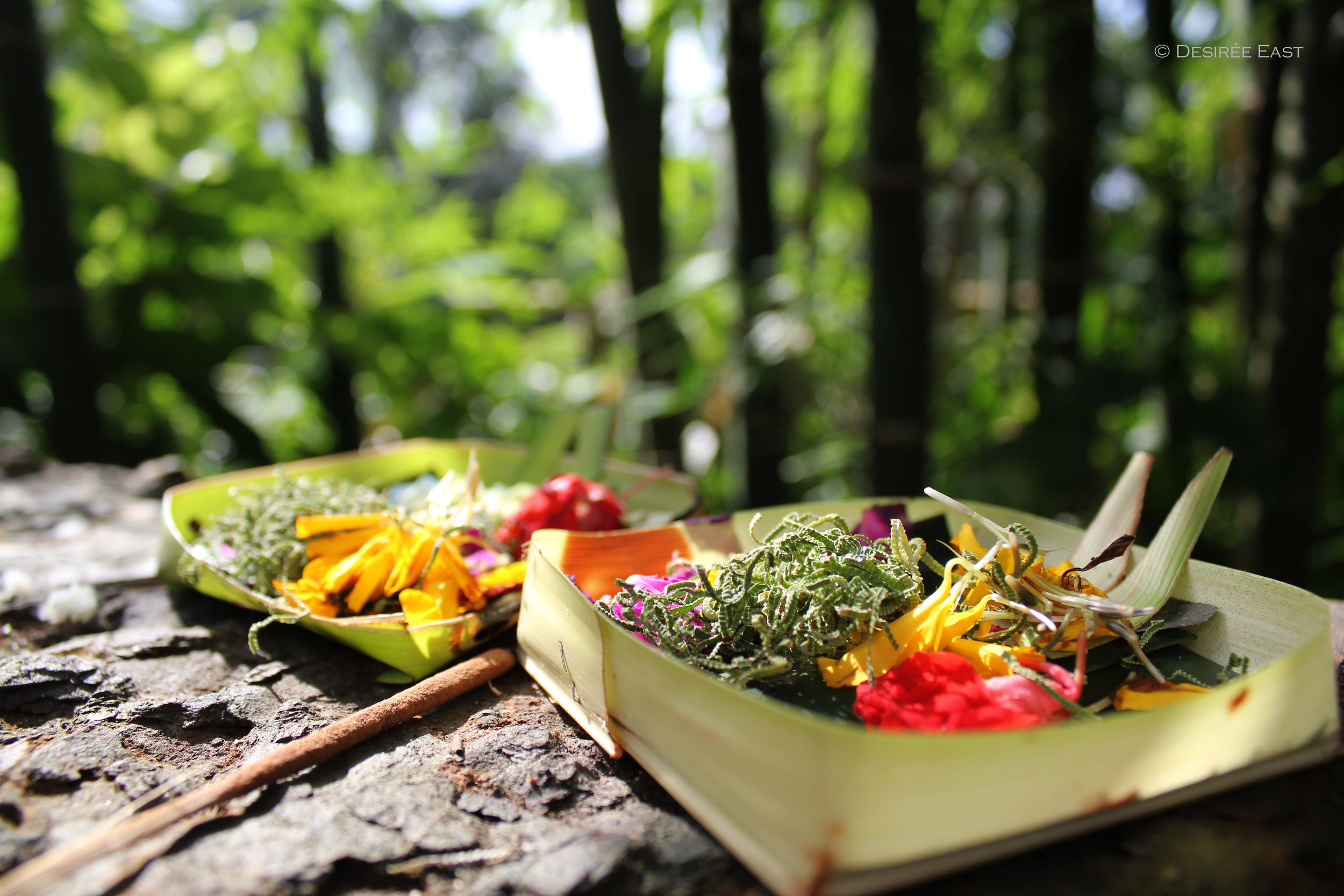 bridge offerings. ubud - bali, indonesia. photo by desiree east