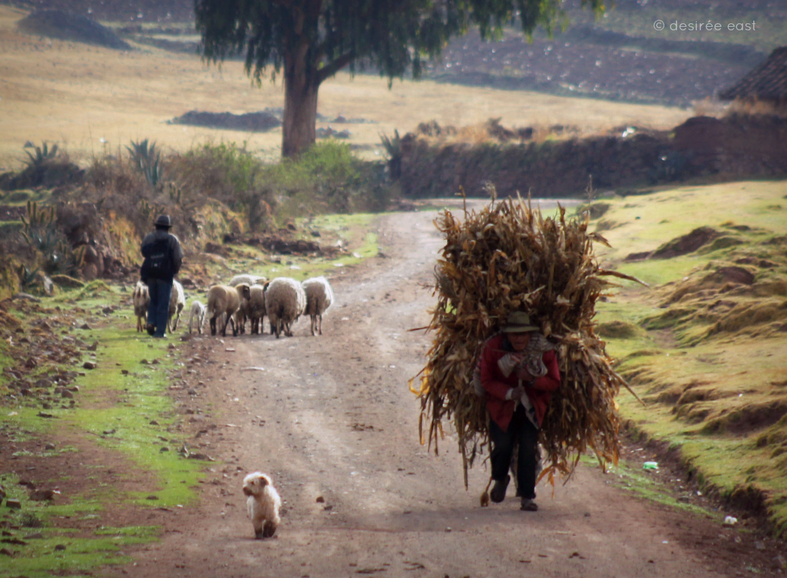 weekly photo challenge. everyday life. peru 2011 by desiree east