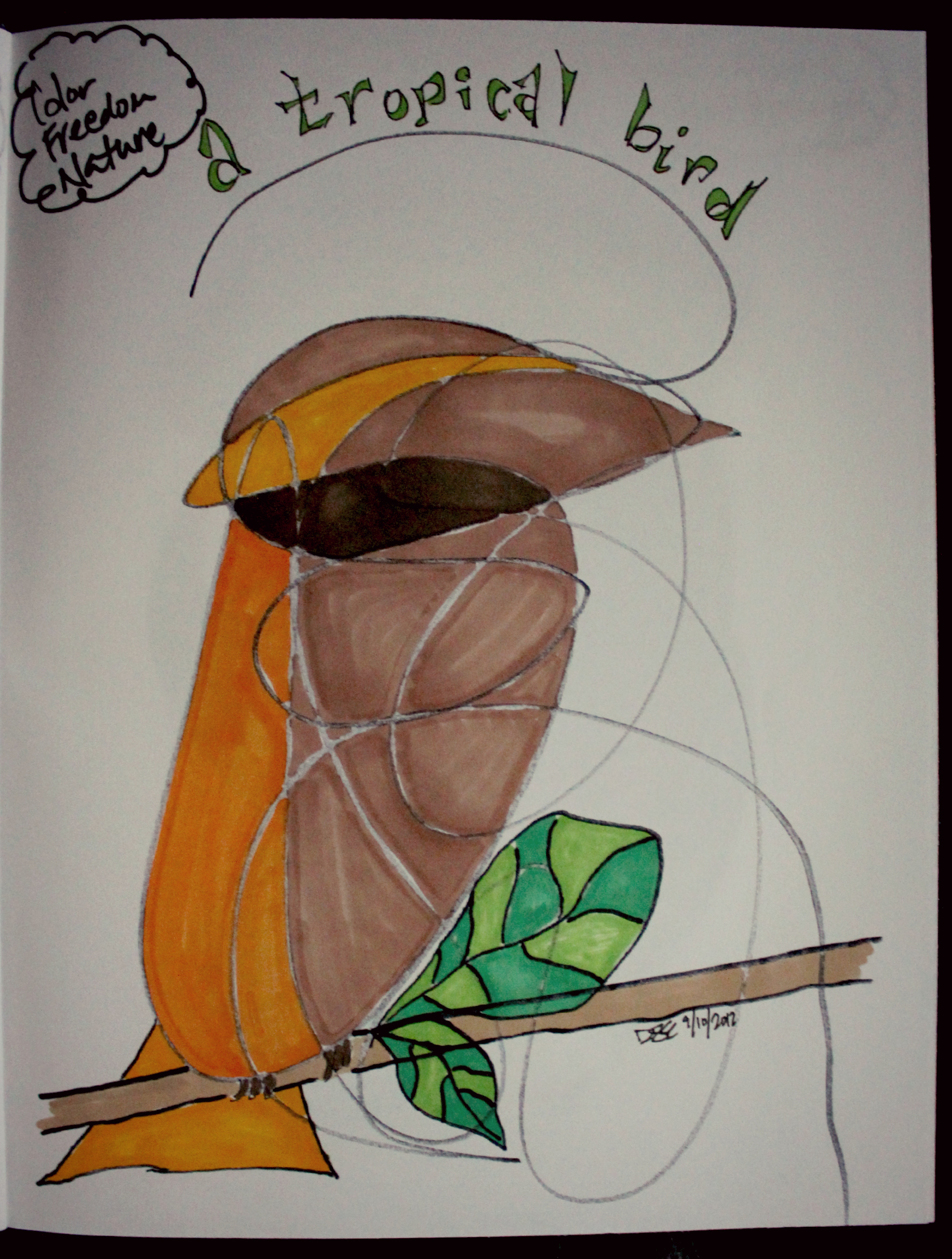 a tropical bird scribble. the words that spoke to me: color, freedom, nature. by desiree east