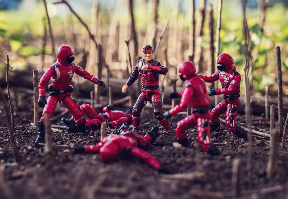 budo-cobra-crimson-guard-ninja-shang-tsung-mortal-kombat-action-figure-toy-photography-paul-panfalone.jpg