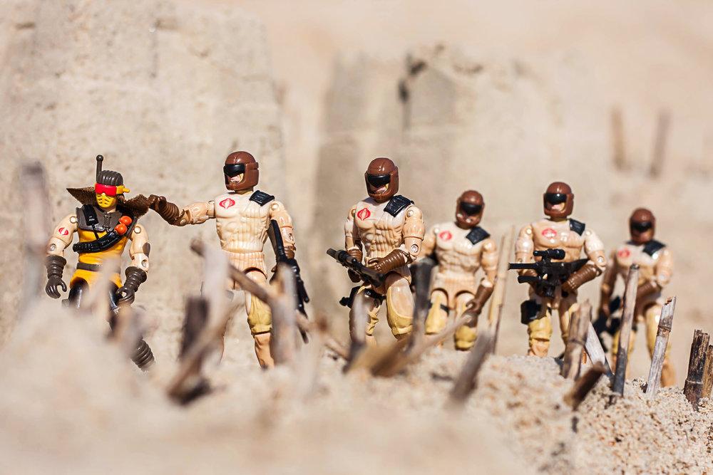 Desert_Scorpion_2_SS.jpg