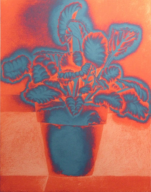 "African Violet - 1 : ""New Prints"" mixed media - pencil and IT software"
