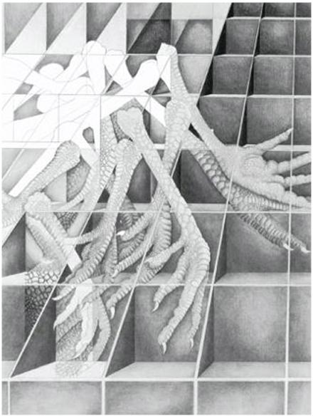 Dissection-Webready2.jpg