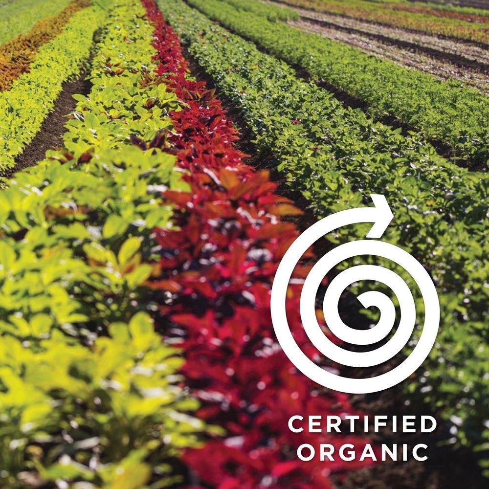 Organic%2BNation%2BCertified%2BOrganic%2B840x540px%2Bx4V2-3.jpg