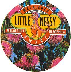 Little Nessie 2.jpg