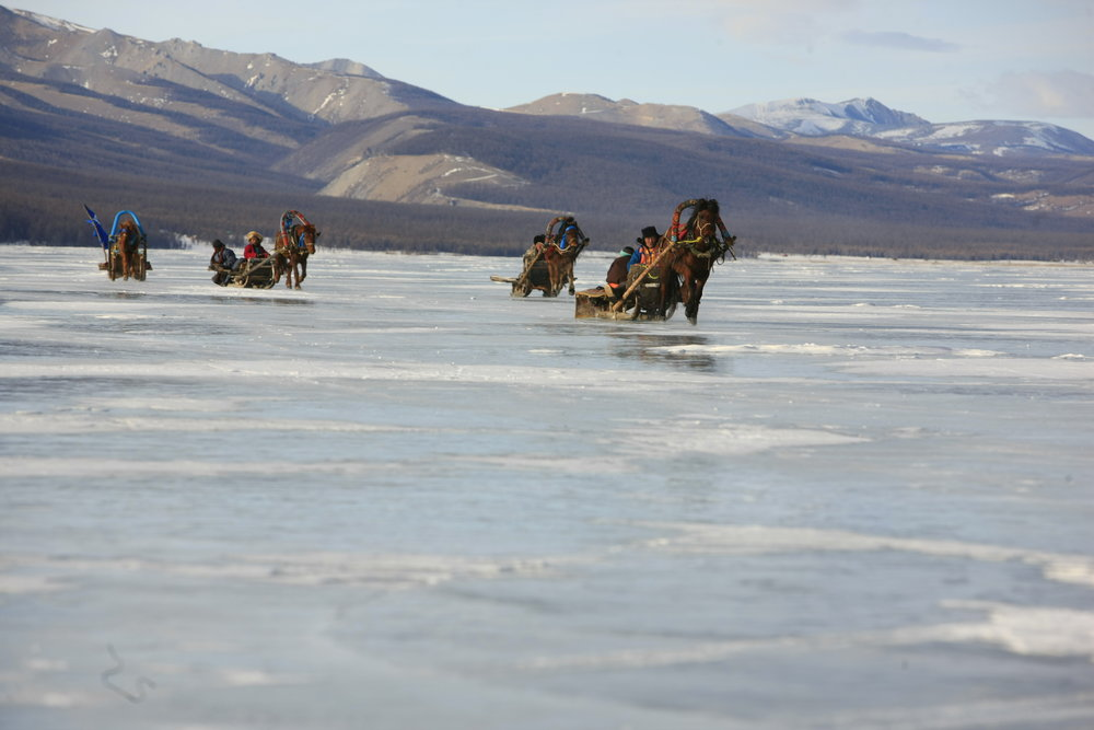 Horse sledding on Lake Huvsgul, photo by N.Baatar