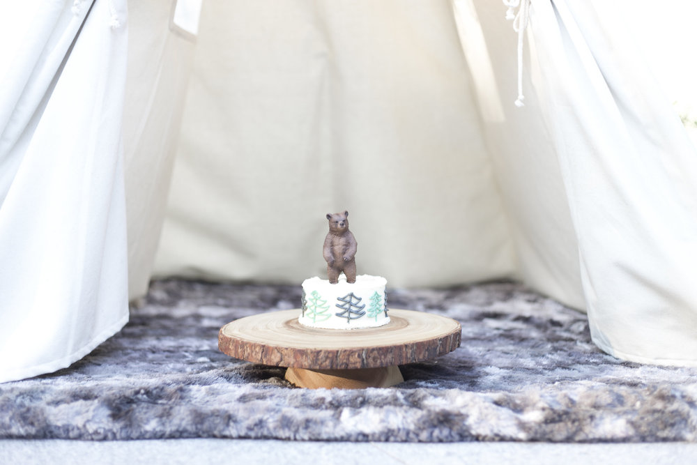 woodland first birthday with teepee