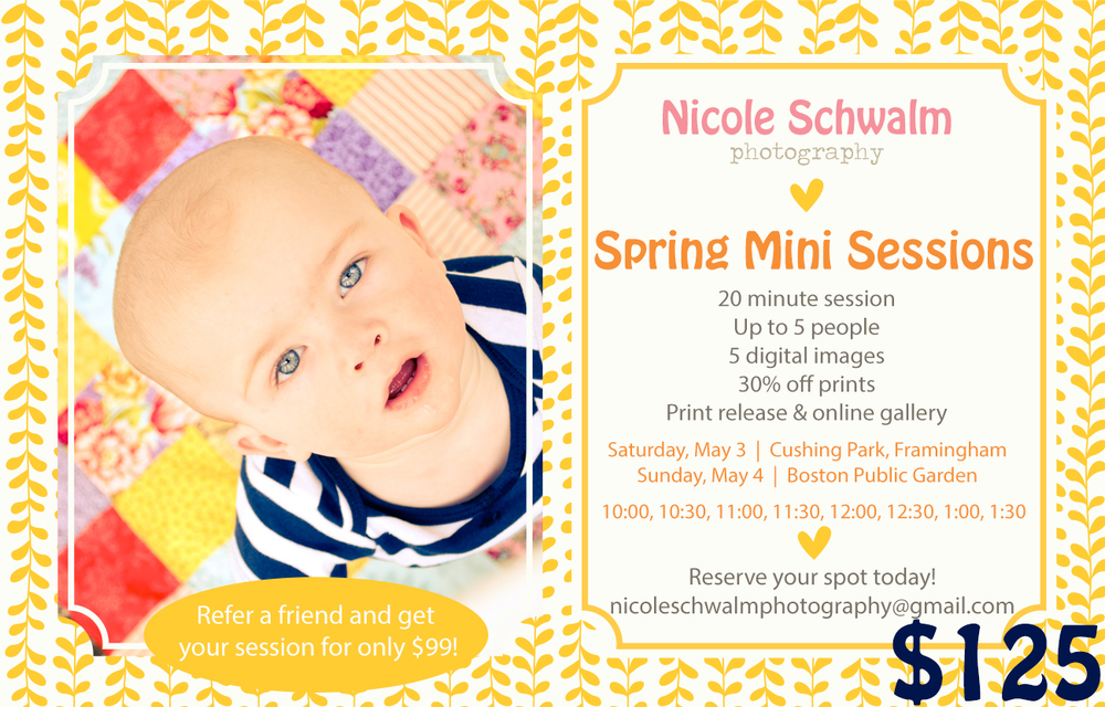 spring-mini-sessions-2014.jpg