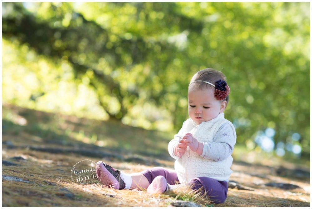 boston baby photographer fall family photos, arnold arboretum