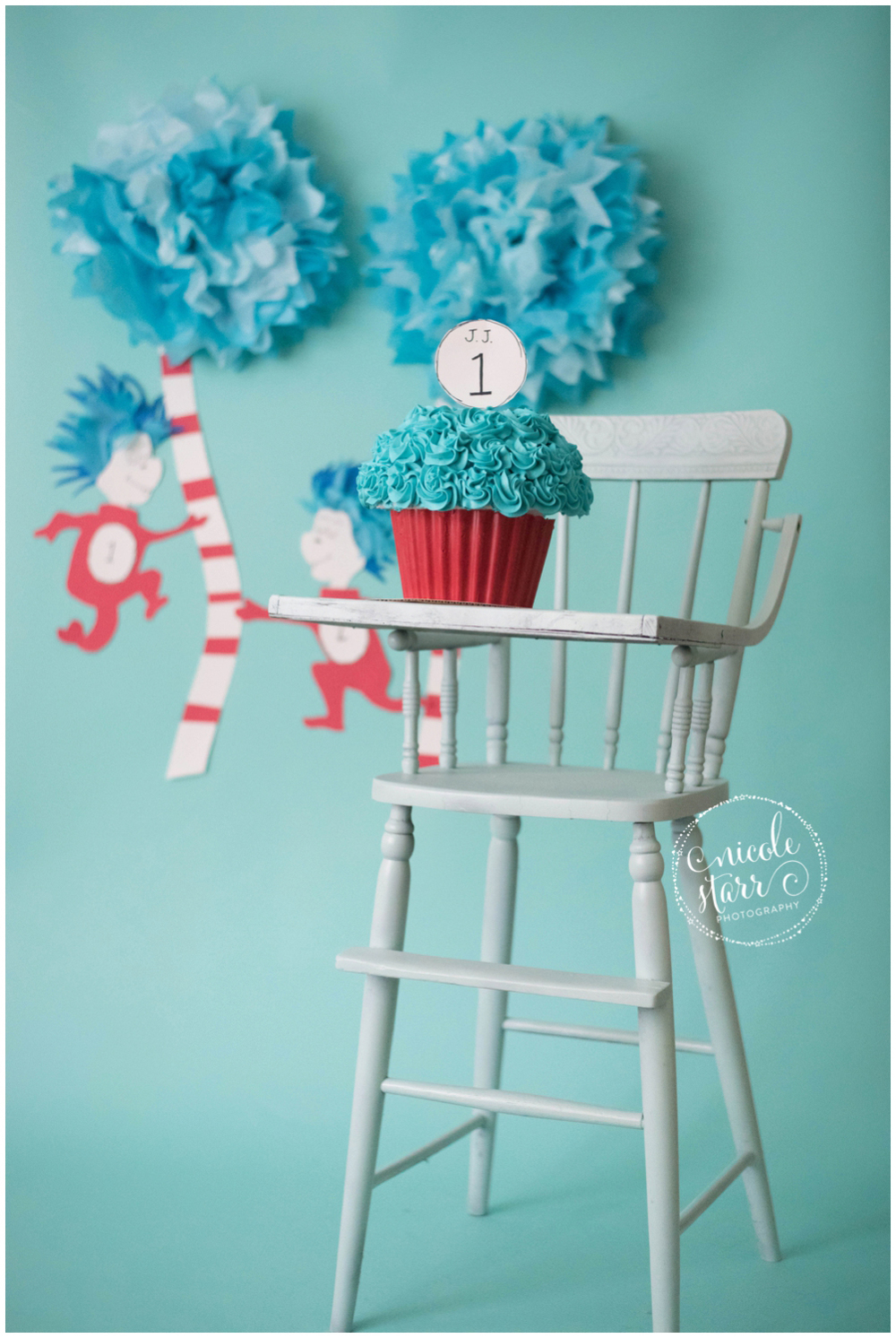 boston baby photographer dr seuss cake smash_0002