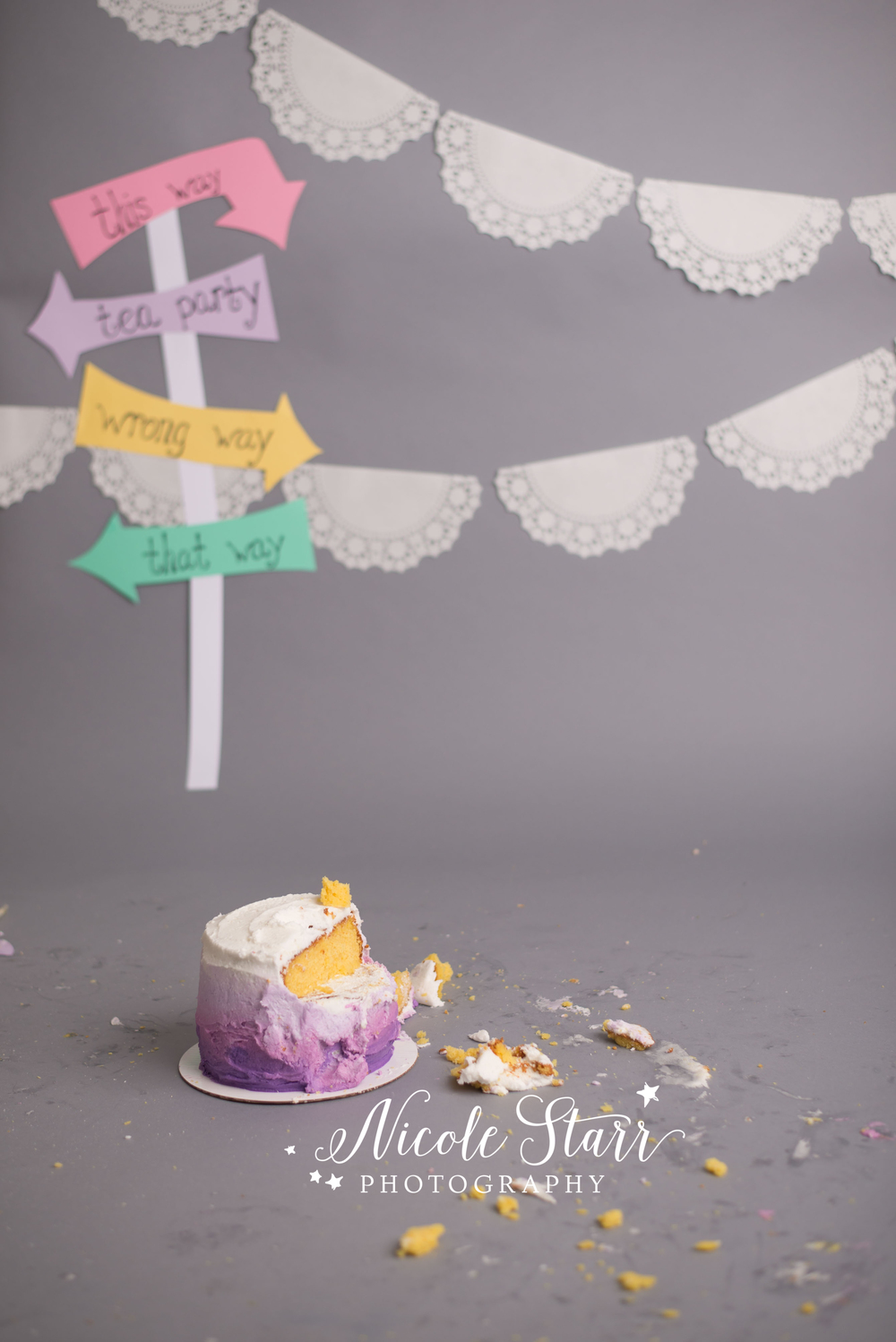 alice in wonderland cake smash with baby photographer nicole starr photography