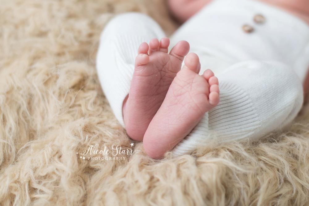 Saratoga Albany NY newborn baby photographer