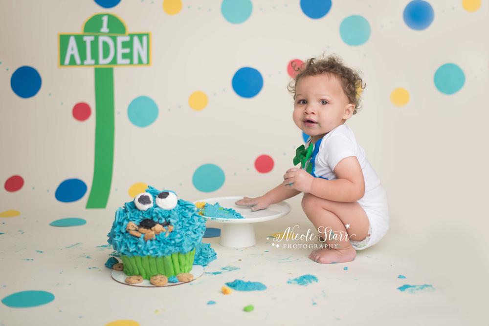 upstate new york baby birthday photographer sesame street cookie monster cake smash.jpg