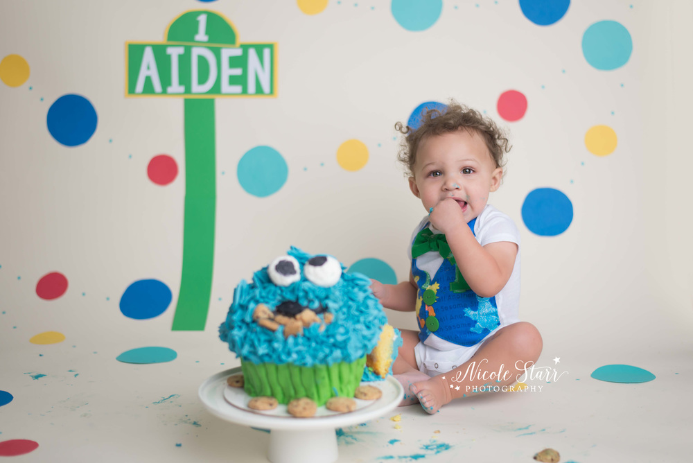 saratoga springs upstate new york baby photographer cake smash session sesame street.jpg