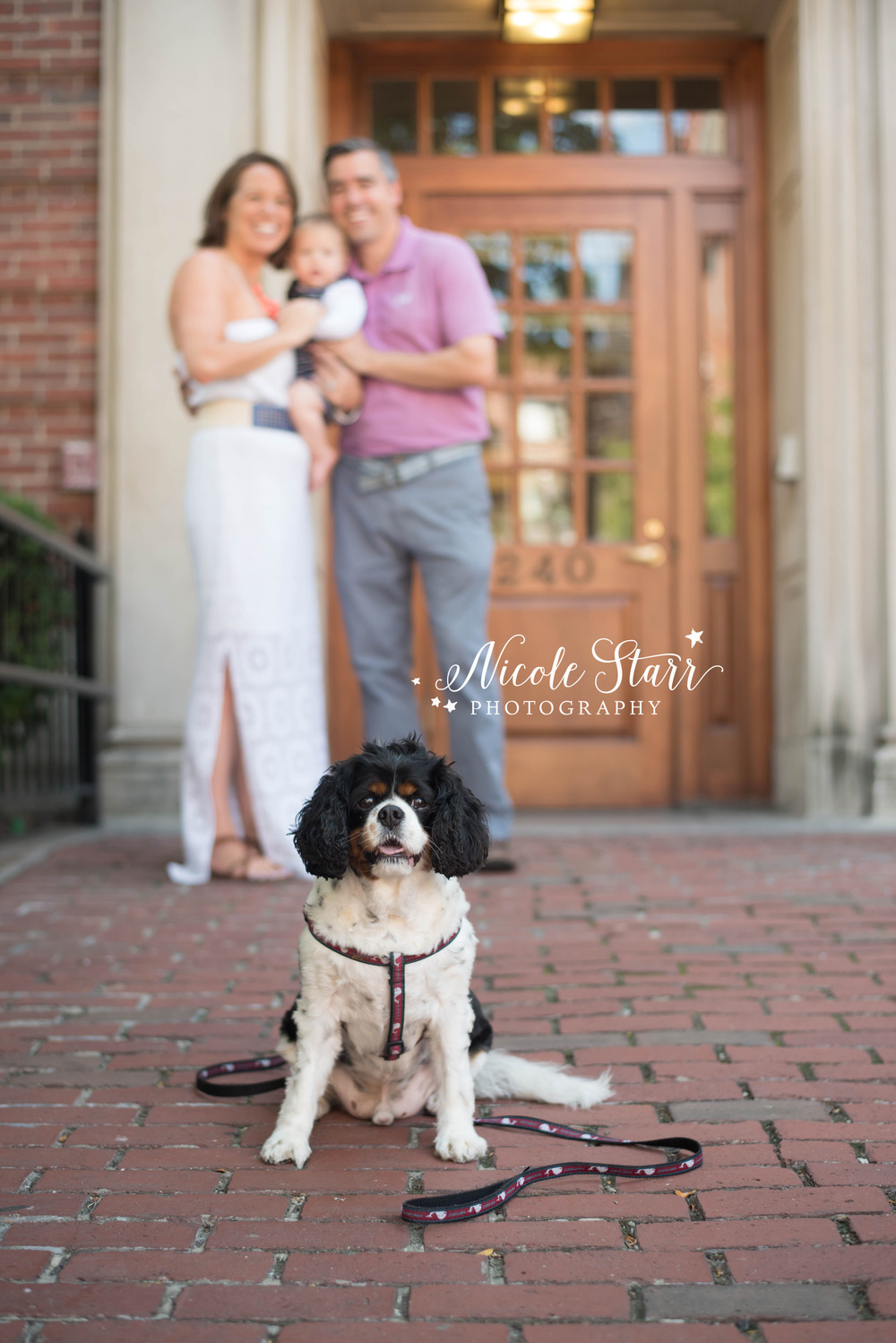 boston family photographer brick sidewalks.jpg