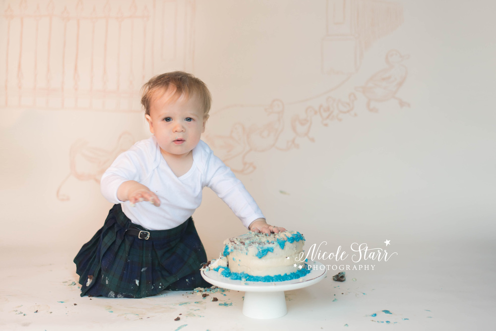 make way for ducklings baby's first birthday cake smash.jpg