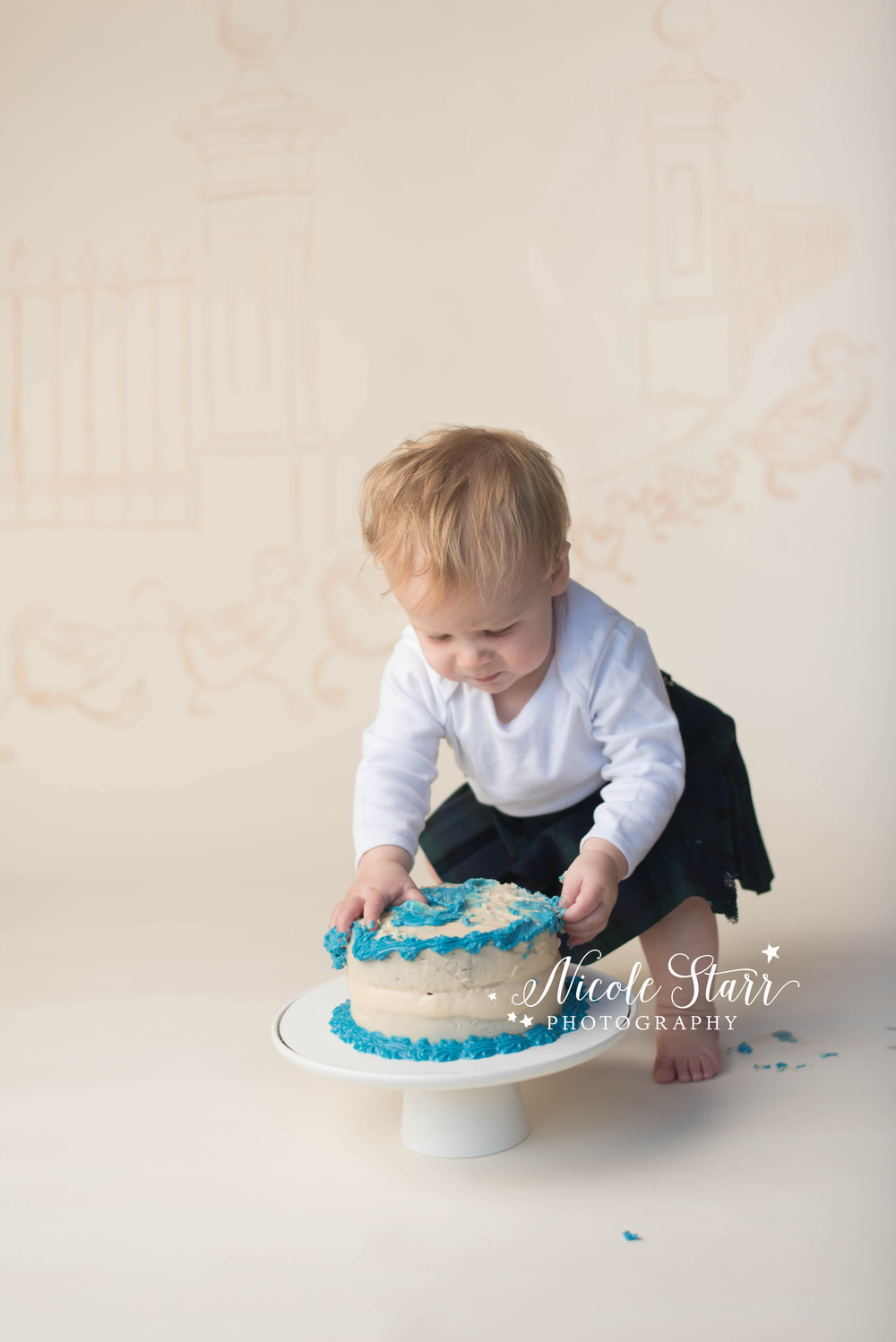 make way for ducklings cake smash with boston baby photographer.jpg