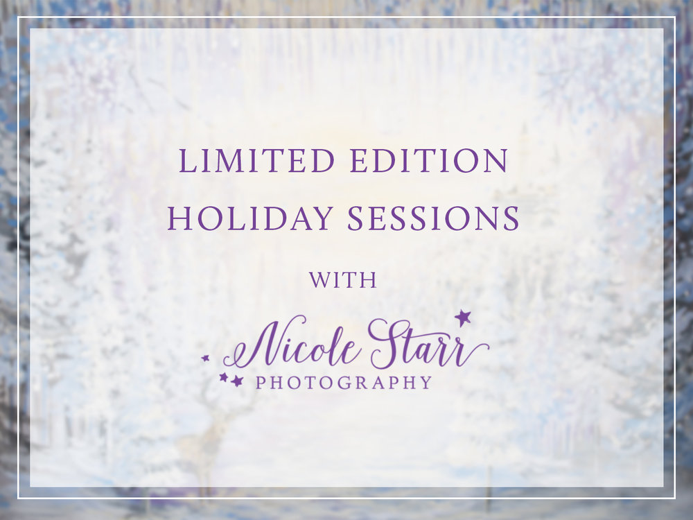christmas holiday mini session saratoga springs baby photographer boston baby photographer