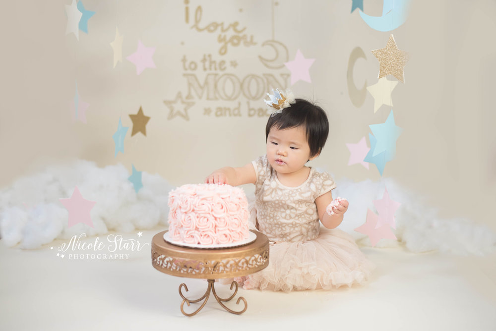love you to the moon and back twinkle twinkle little star cake smash with capital region new york baby photographer nicole starr photography