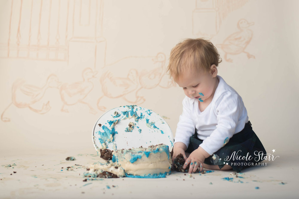 make way for ducklings cake smash boston baby photographer.jpg