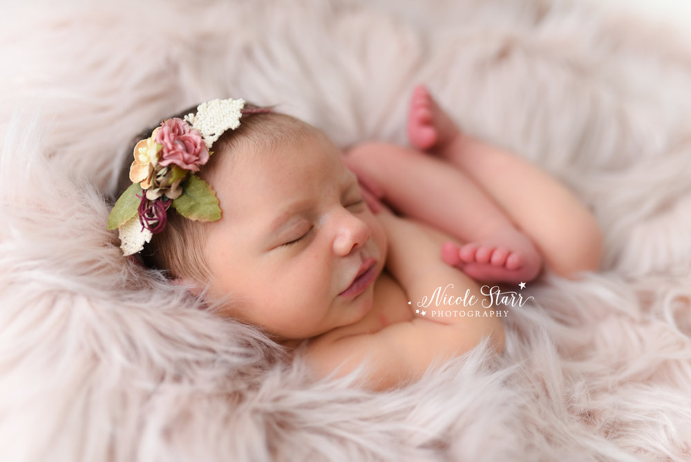 Welcome emma adele a pink and girly studio newborn session with saratoga springs newborn photographer saratoga springs boston baby photographer