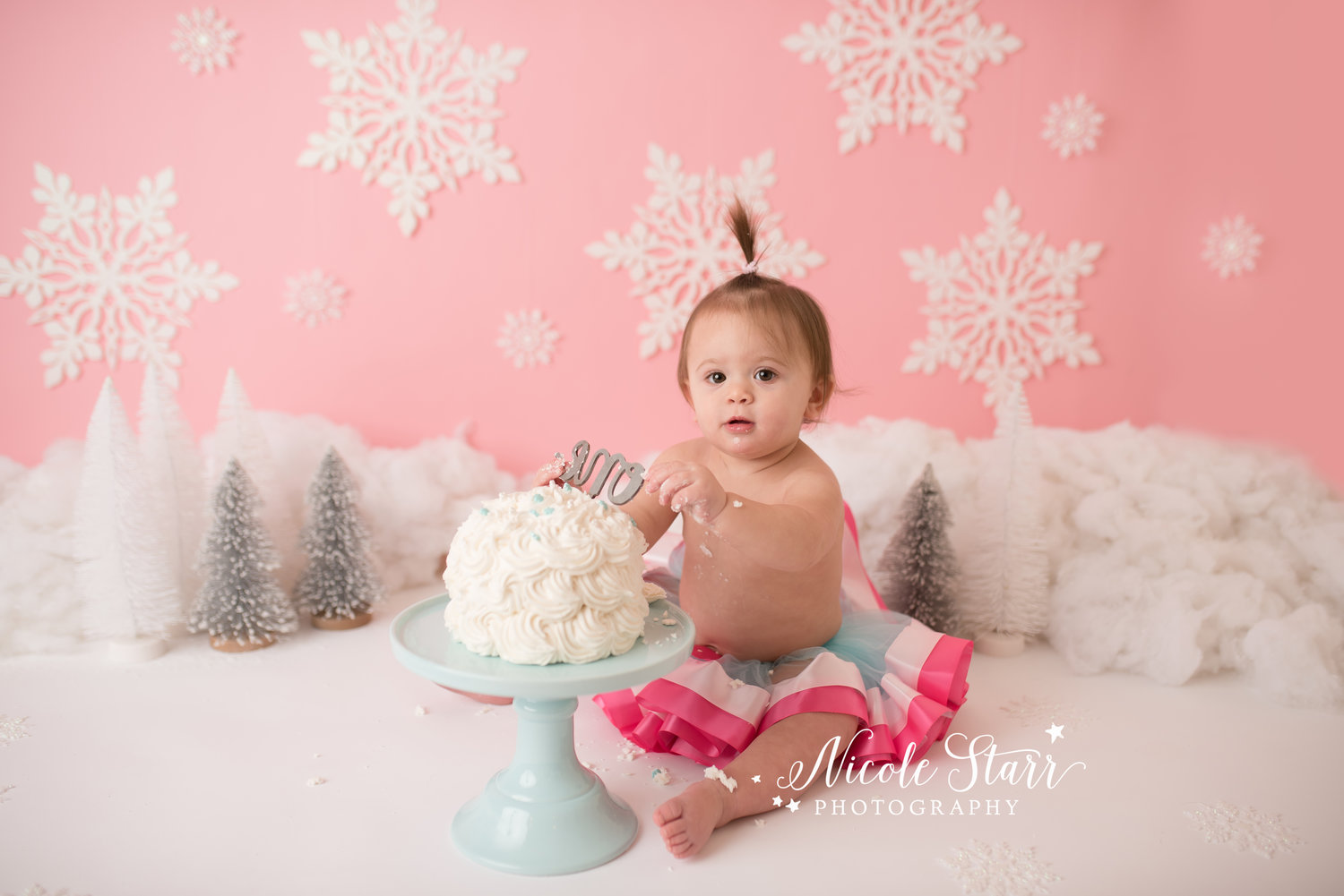573311564 A Pink and Silver Winter Wonderland Cake Smash for Kataryna ...