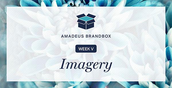 Amadeus-BrandBox-Imagery.jpg